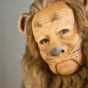 Closeup of the Cowardly lion from the Wizard of OZ